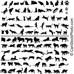 100 cats - 100 silhouettes of big and small cats
