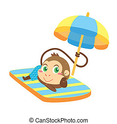 a monkey's beach activities - a cute monkey soak up a...