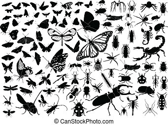 100 insects - 100 vector silhouettes of insects butterflies,...
