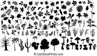 Plants - Vector silhouettes of different leaves, trees,...
