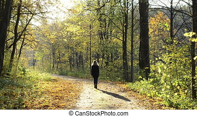 woman autumn road leaves - blond beautiful woman walk on...