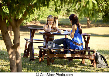 Young college female students studying for university exam -...