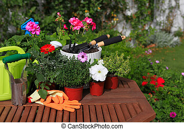 planting flowers with garden tools ,various flowers and...