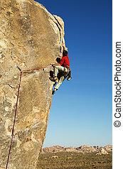 joshua, 攀登, 樹, 岩石