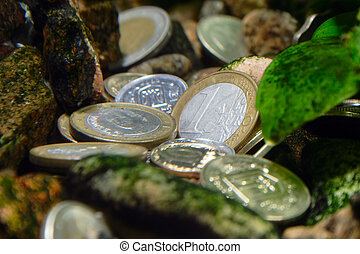 differents coins - treasure on the river bottom - differents...