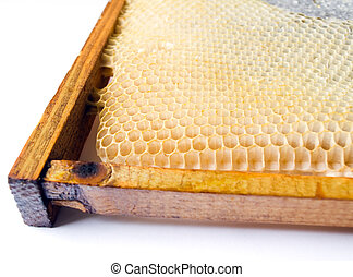 fresh honey in comb. Beer honey in honeycombs. Natural...