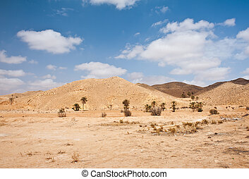 Sahara - Not only sand dunes, but also arid mountains are a...