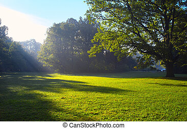 Park in spring time