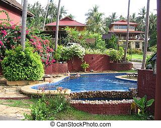 tropical, paraíso