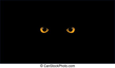 yellow eyes blink - blinking eyes in the dark