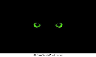 green eyes blink - blinking eyes in the dark
