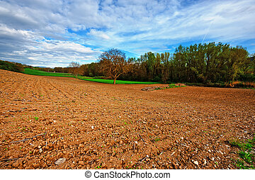 Plowed Fields - The Italian Farmhouse Surrounded by Forests...