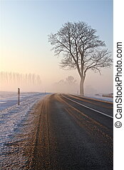 street into the sun - a nice winter landscape on a december...