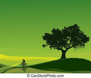 Cyclist in a green dawn