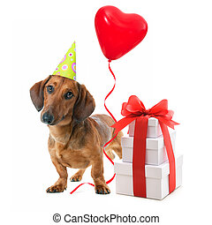 Party dog with party hat, gift boxes and balloons. Isolated...