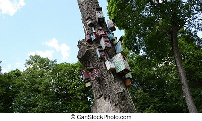 colorful bird house tree