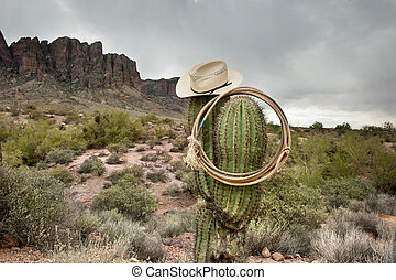 Lasso on cactus - A moody image of a lasso and cowboy hat...