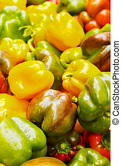 Many Color Bell Peppers at the farmers market with sharp...