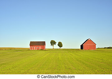 Red barns - Two red barns and trees in a field on a sunny...