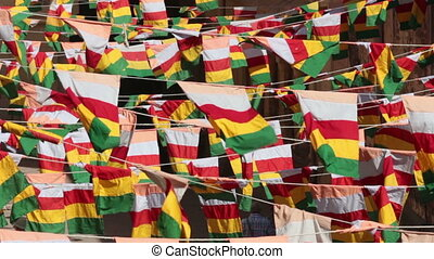 rajasthan flags in jodhpur fort india