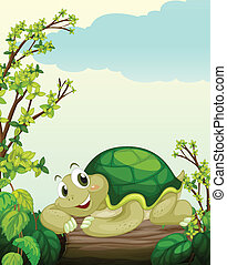 A turtle lying on dry wood