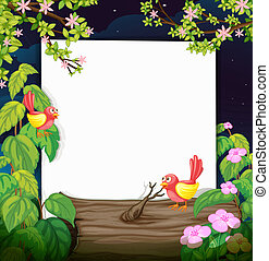 Birds and a white board - Illustration of birds and a white...