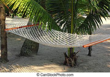 hammock under palms - hammock under palm trees - resort...