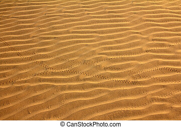 sand in desert with scarab footprints