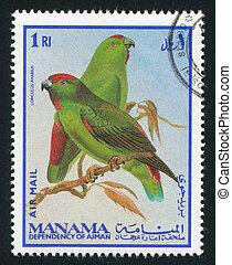 Moluccan Hanging Parrot - MANAMA - CIRCA 1976: stamp printed...