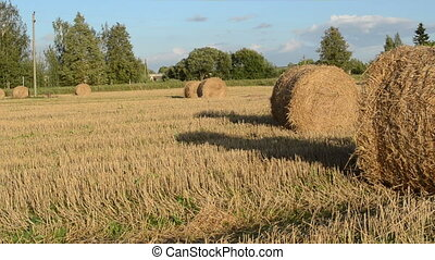 man push straw roll field