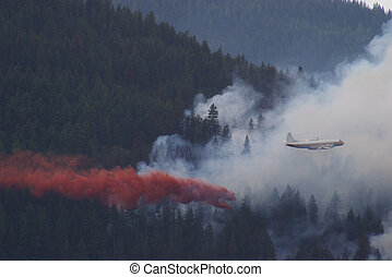 Forest Fire Fighting A - Fighting a forest fire in the...