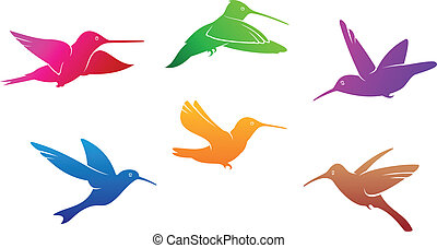 Hummingbirds symbols set with color plumage isolated on...