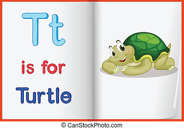 A picture of a turtle in a book - Illustration of a turtle...