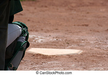 Catchers Leg - A catchers leg with home plate in the...
