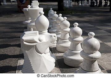 Chess Pieces on Board in Park