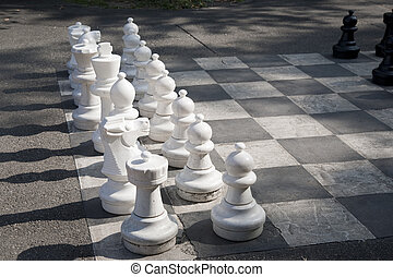 White Chess Pieces on Board