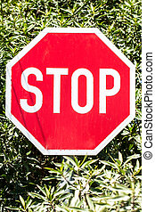 Stop board - The stopping board against the road.