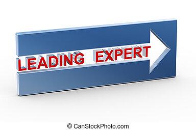 3d leading expert