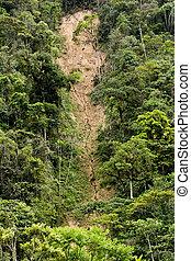 desmoronamento, Erosão, selva