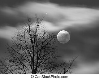 Scary Full Moon Scene - Full moon behind clouds and tree