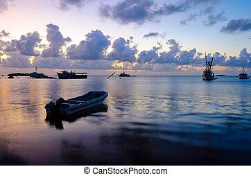 Early Morning Boats
