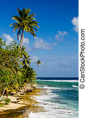 Coastline of San Andres Island - Caribbean coastline with...