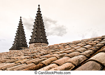 Roof Top Domes on the Palais Des Papes - The roof of Palais...
