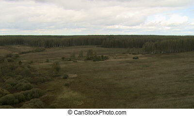 View on forest from helicopter
