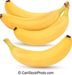 Bunch of bananas. Vector illustration.