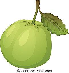 fruta, Ilustración