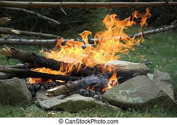 Campfire - Fire in the morning. Green grass and stones.