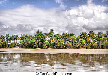 Mission Beach in Tropical Queensland, south of Cairns,...
