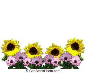 Spring Sunflowers Border