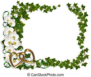 Orchid and Ivy Border frame - Illustration and image...